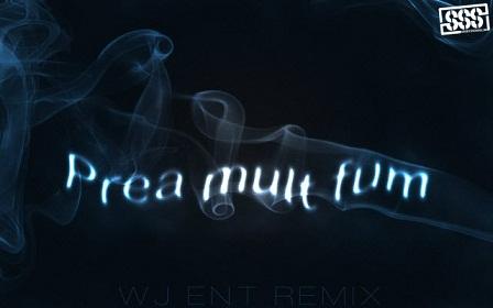 preamultfum6401 Grasu XXL feat. Mitza – Prea mult fum [WJ Entertainment REMIX] (2010)