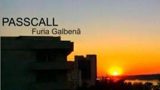Passcall - Furia Galbena www.vedetepenet.ro