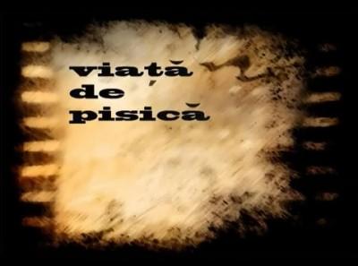 elnino viata de pisica 400x297 El Nino feat. Mr. Levy   Viata de pisica