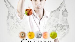 COPERTA DVD [fata]- iRonic GRADINA CU MERE www.vedetepenet.ro