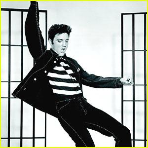 elvis presley film Elvis Presley   Fame and Fortune (film biografic)
