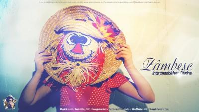 Interpretabil - Zambesc feat. Cristina www.vedetepenet.ro