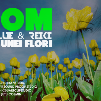 Untitled www.vedetepenet.ro  200x200 Atom feat. Clue & Reiki   Magia unei flori