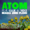 Atom feat. Clue & Reiki - Magia unei flori www.vedetepenet.ro