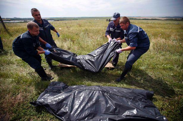 MH17-malaysia-crash-site_Vedetepenet.ro