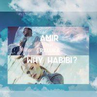 Imagini Amir feat. Raluka – Why Habibi?  VIDEOCLIP